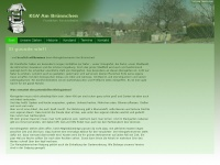 am-bruennchen.de Webseite Vorschau