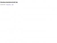 amateurmeisterschaft.de Webseite Vorschau