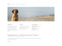 amazing-kaja.de Webseite Vorschau