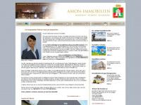amon-immobilien.de Webseite Vorschau