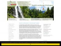 amrennsteig.de Webseite Vorschau