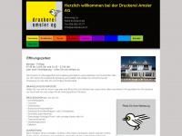 amslerdruck.ch Webseite Vorschau