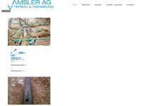 amslertiefbau.ch Webseite Vorschau