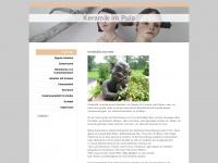 keramik-im-puls.de