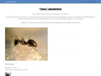 traumlaboratorium.de Webseite Vorschau