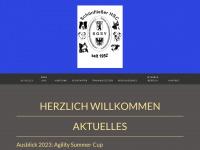 schoenfliesser-hsc.de