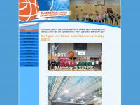 basket-feldkirchen.at