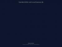 foerdermittel-und-zuschuesse.de Webseite Vorschau
