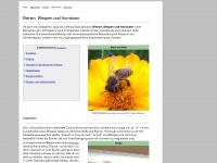 Bienen-wespen-und-hornissen.de