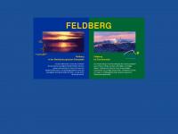 feldberg.de