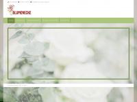 Blumenecke-fuegen.at