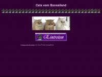 Bonsailand-cats.ch