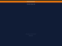 boom-town.de