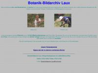 Botanik-bildarchiv-laux.de