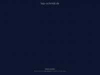 bqs-schmidt.de Webseite Vorschau