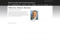 brillant-consulting.de