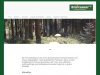 bruelisauer-ag.ch