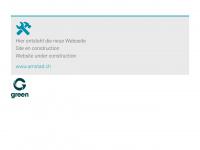 amstad.ch Webseite Vorschau