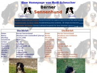 berner-sennenhund.at
