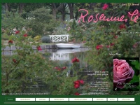 rosenmeile.de Webseite Vorschau