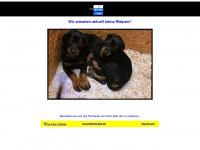 vonderrheinaue.de
