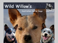 wildwillow.ch