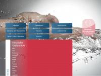 burkhalter-h2o.ch
