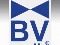 bv-audio.de
