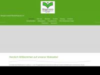 bv-ndk.de Thumbnail