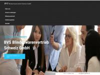 bvs-gmbh.ch Thumbnail