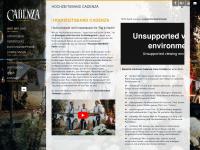 cadenza-unplugged.de