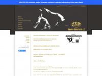 capoeira-schule-berlin.de