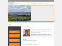 cdu-pellenz.de Webseite Vorschau