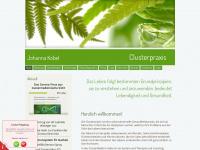 clusterpraxis.ch