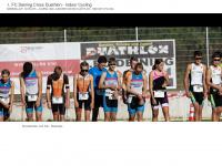 crazysports.de