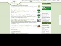 amt-nennhausen.de Webseite Vorschau