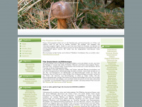 pilzinfos-online.de