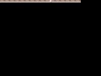 dbbau.at Webseite Vorschau