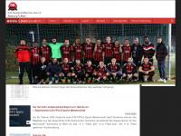 djk-sportbund-muenchen-ost-fussball.de