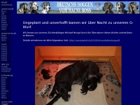 doggen.ch Thumbnail