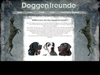 doggenfreunde.at Thumbnail