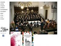 domchor-solothurn.ch