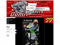 domi-fighters.ch Thumbnail