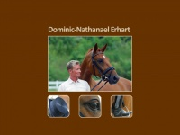 dominic-erhart.de Thumbnail