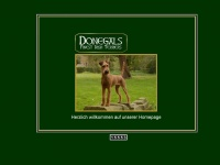 donegals-irish-terrier.de Thumbnail