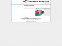 druckservice-springob.de