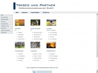 trebesundpartner.de