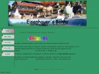 eisenhauers-bonny.de Webseite Vorschau