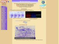 electrophoresis-development-consulting.de
