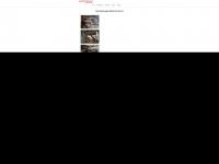 Elektro-imholz.ch